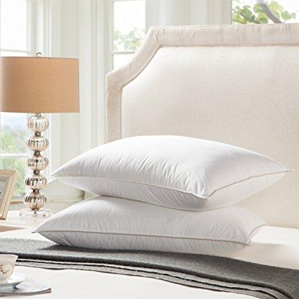 Egyptian Bedding Goose Down Pillows