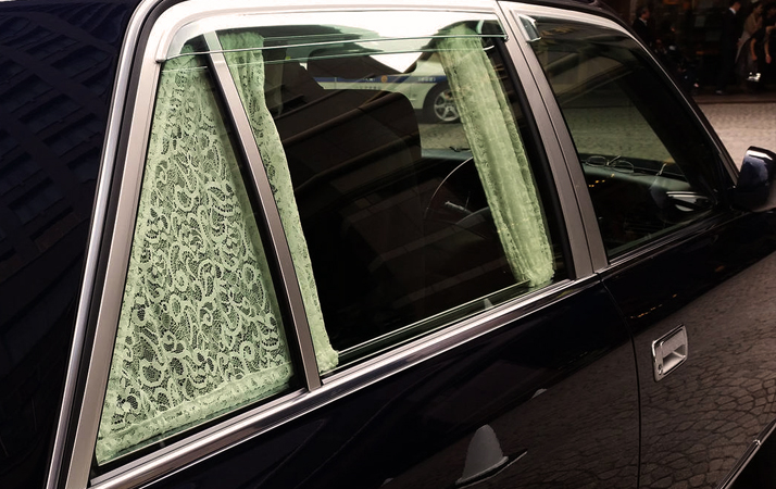Car Window Curtains for Privacy