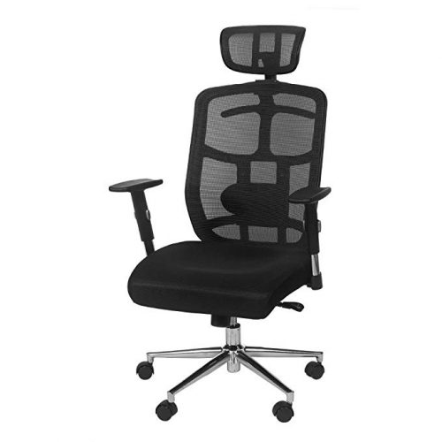 TOPSKY Mesh Computer Office Chair Ergonomic Design Chair Skeletal - Minimal Design Office Chair