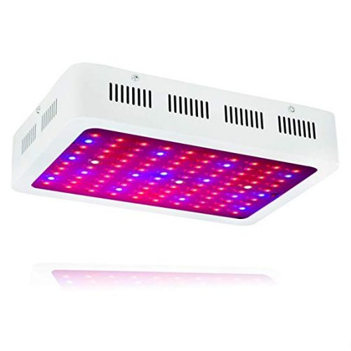 WYZM 1000W Full Spectrum LED Grow Light,100-265V Input,Special Design for Indoor Growing Herbs and Plants (100X10W)