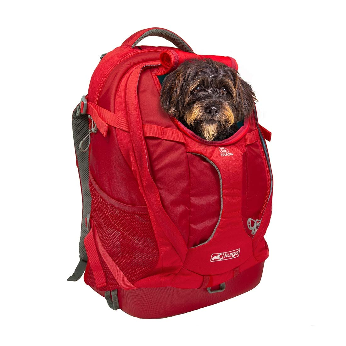 Kurgo Dog Carrier Backpack for Small Pets - Dogs & Cats | TSA Airline Approved | Cat | Hiking or Travel | Waterproof Bottom | G-Train | K9 Ruck Sack | Red | Grey