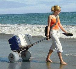 Folding Beach Cart by Wheeleez Rolling Caddy